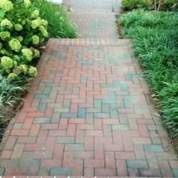 Emerson pavers in a yard
